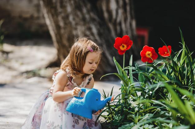 dom in vrtnarstvo